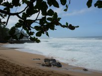 Secret Beach-1